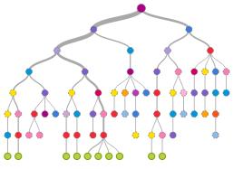 SC Cases' dataset model